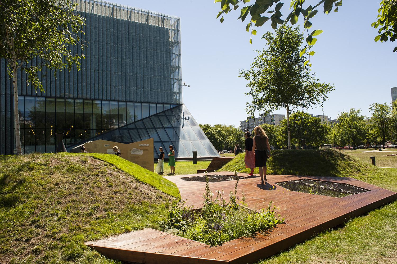 Łąka Leśmiana przy muzeum POLIN