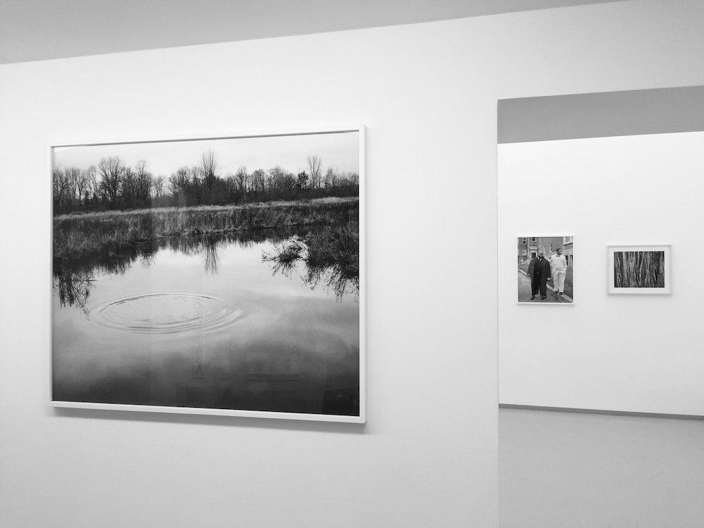 Wystawa Vanessy Winship w galerii Jednostka