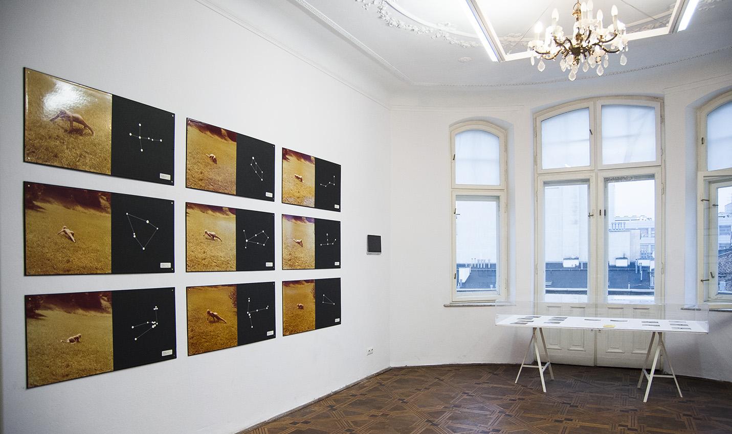 Warsaw Gallery Weekend, galeria Lokal_30