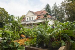 Warszawski Festiwal Kulinarny - Villa Intrata